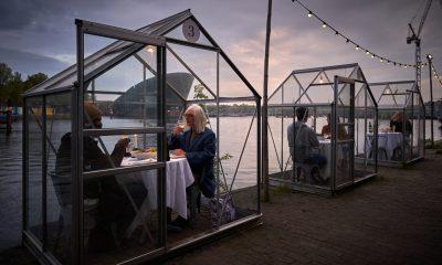 Projektet 'Serres Séparées' i Amsterdam. Bragt med tilladelse fra Mediamatic. Foto: Willem Velthoven.