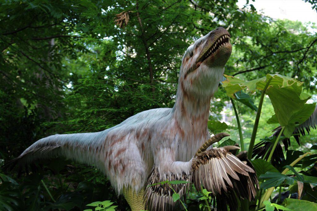Dinosaur i Zoo