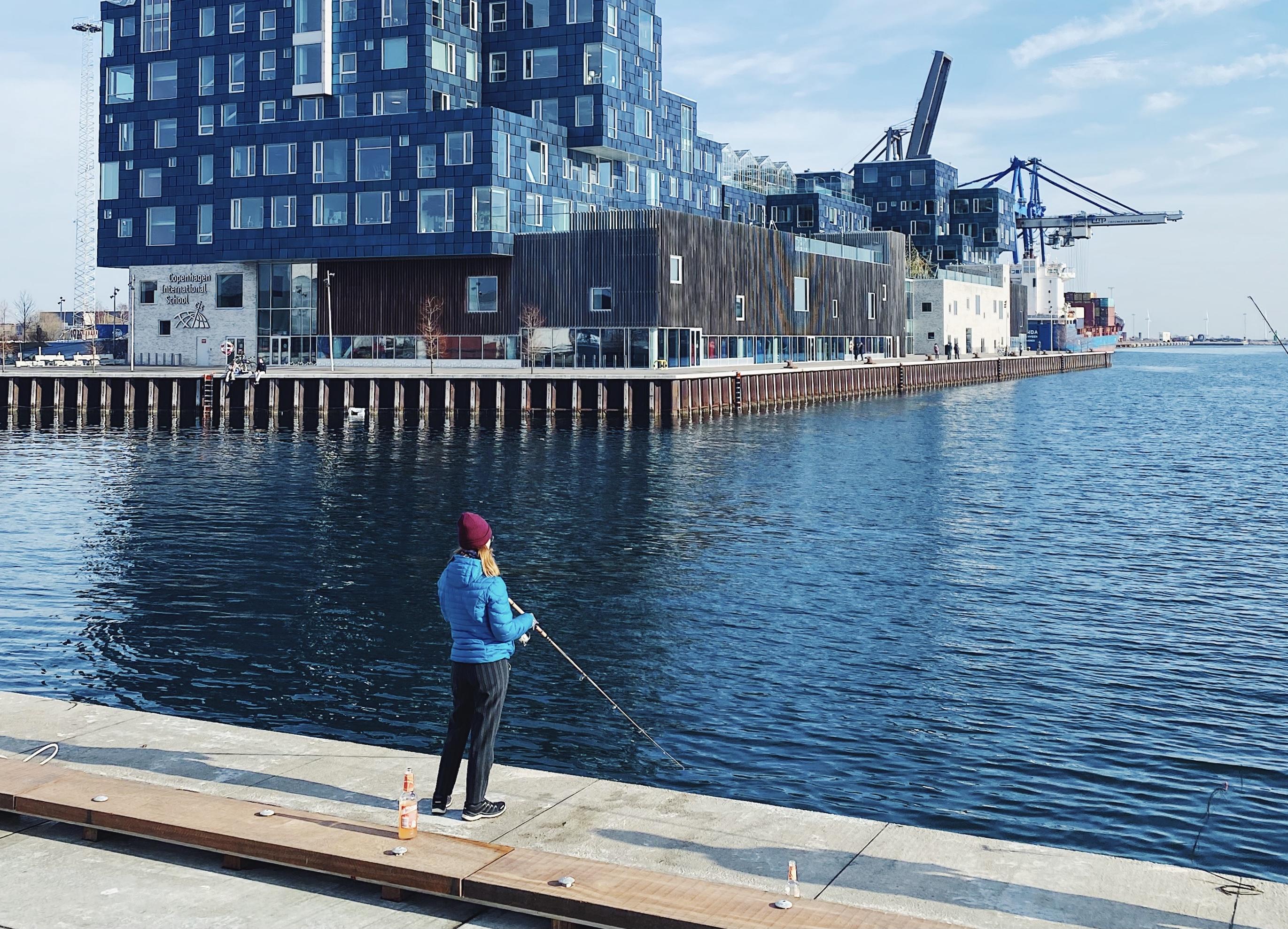 Fiskeri i Københavns Havn
