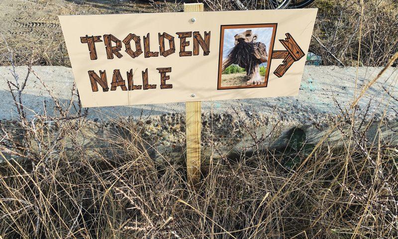 Trolden Nalle bor i Nordhavn i København. Foto: Camilla L. Stahlschmidt