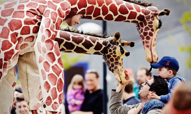 Nu er der Springfestival på Amager. Foto: PR